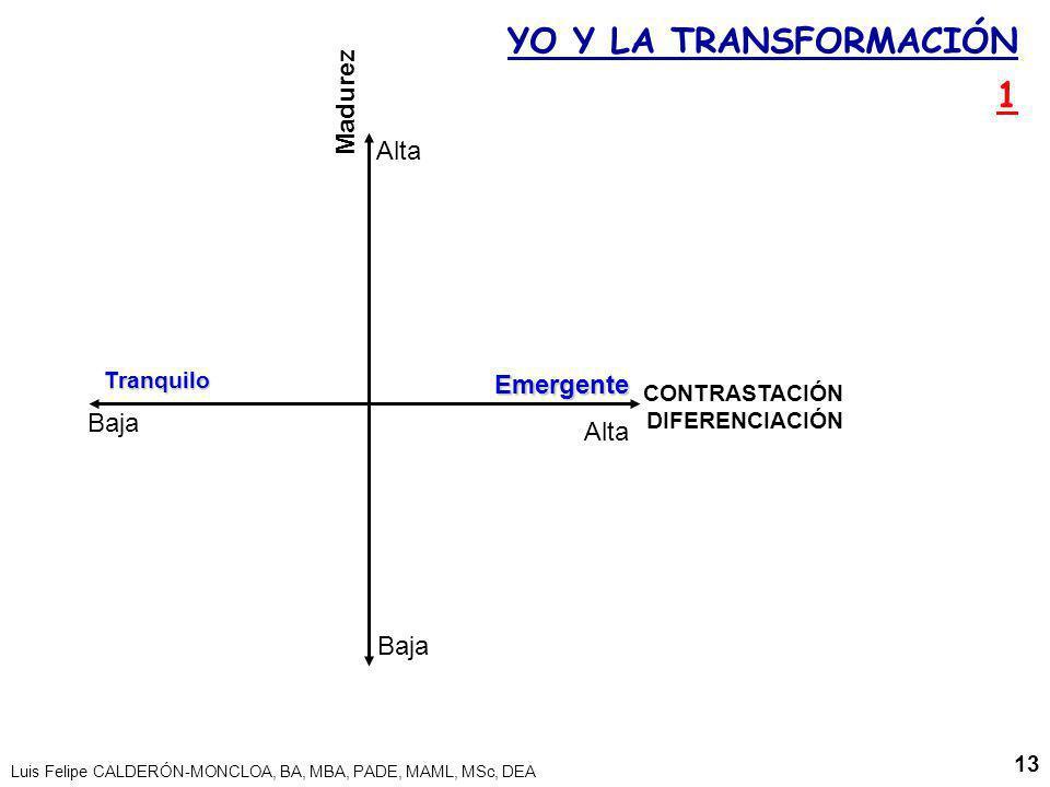 YO Y LA TRANSFORMACIÓN 1 Madurez Alta Emergente Baja Alta Baja