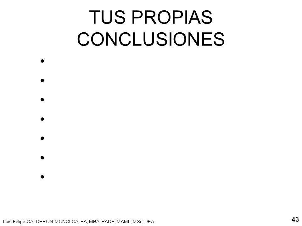 TUS PROPIAS CONCLUSIONES