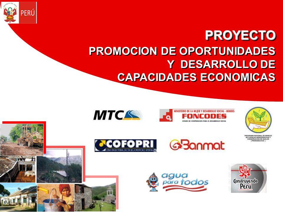 PROYECTO PROMOCION DE OPORTUNIDADES Y DESARROLLO DE CAPACIDADES ECONOMICAS