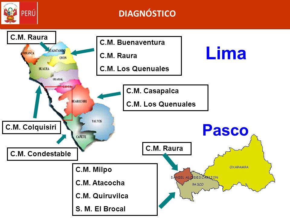 Lima Pasco DIAGNÓSTICO C.M. Raura C.M. Buenaventura C.M. Raura