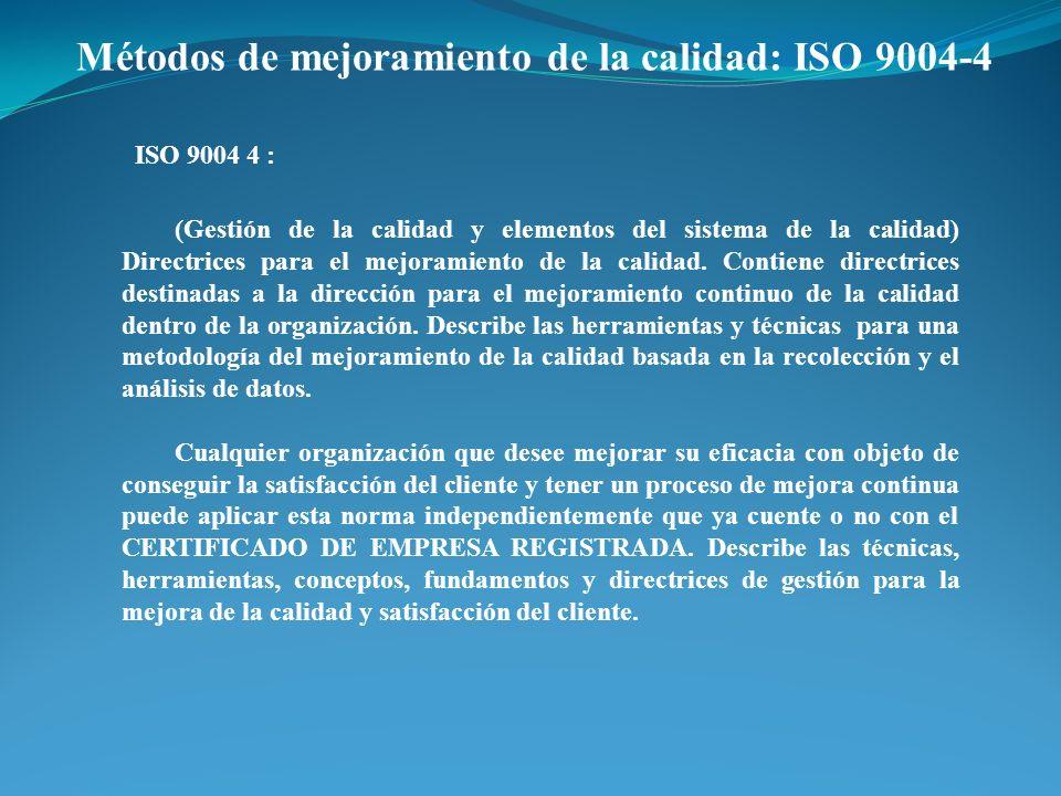 Métodos de mejoramiento de la calidad: ISO 9004-4