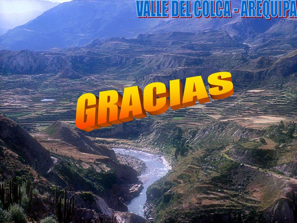 VALLE DEL COLCA - AREQUIPA