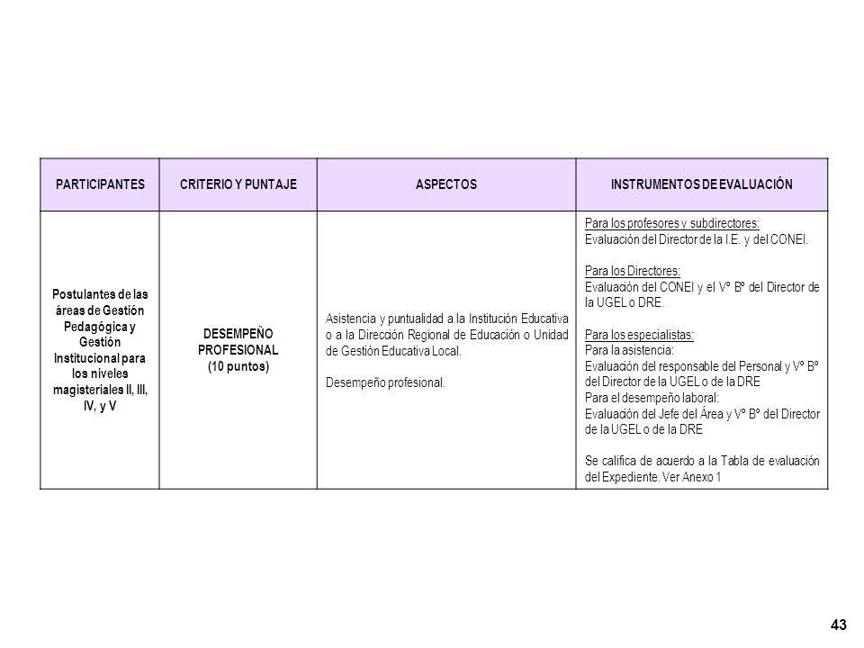 INSTRUMENTOS DE EVALUACIÓN DESEMPEÑO PROFESIONAL