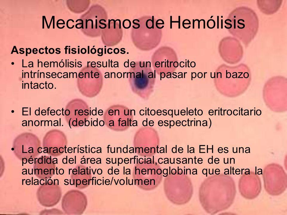 Mecanismos de Hemólisis