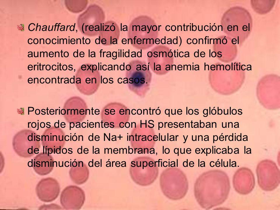 Chauffard, (realizó la mayor contribución en el conocimiento de la enfermedad) confirmó el aumento de la fragilidad osmótica de los eritrocitos, explicando así la anemia hemolítica encontrada en los casos.