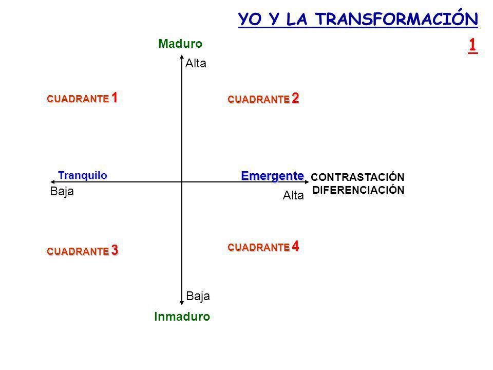 YO Y LA TRANSFORMACIÓN 1 Maduro Alta Emergente Baja Alta Baja Inmaduro