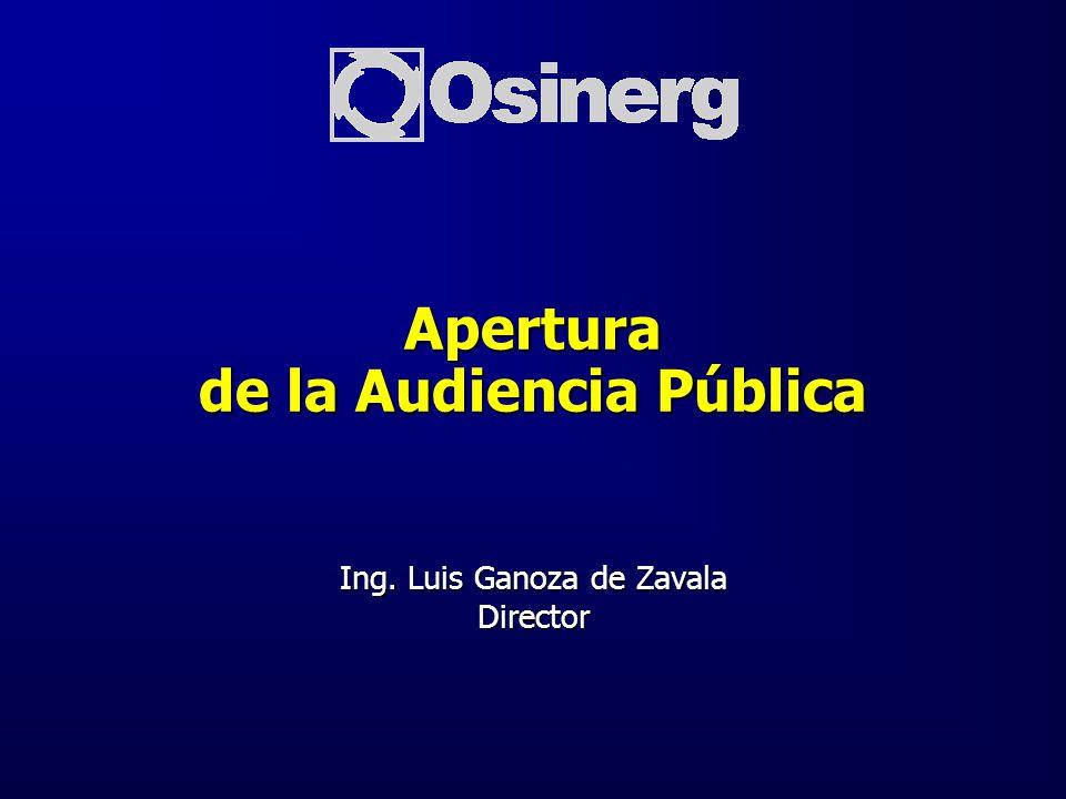 Ing. Luis Ganoza de Zavala Director