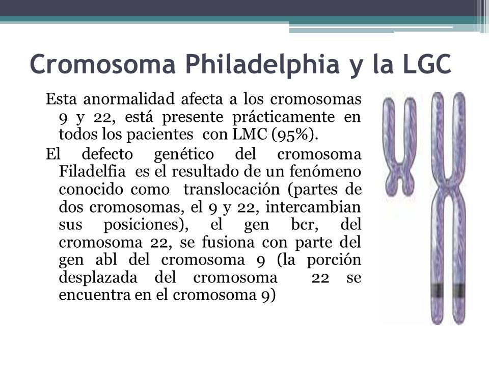 Cromosoma Philadelphia y la LGC