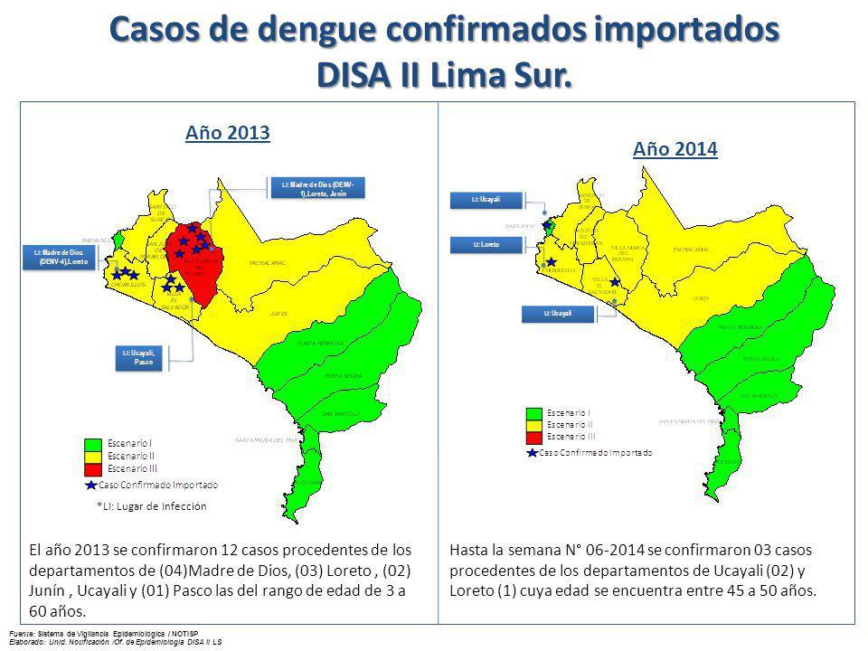 Descripción de casos de DENGUE en el distrito Villa María del Triunfo