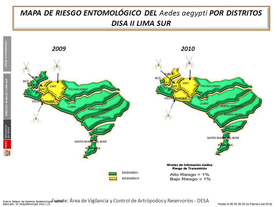 ANTECEDENTES Marzo del 2005 Se identificó Aedes aegypti en el Distrito de Villa María del Triunfo.