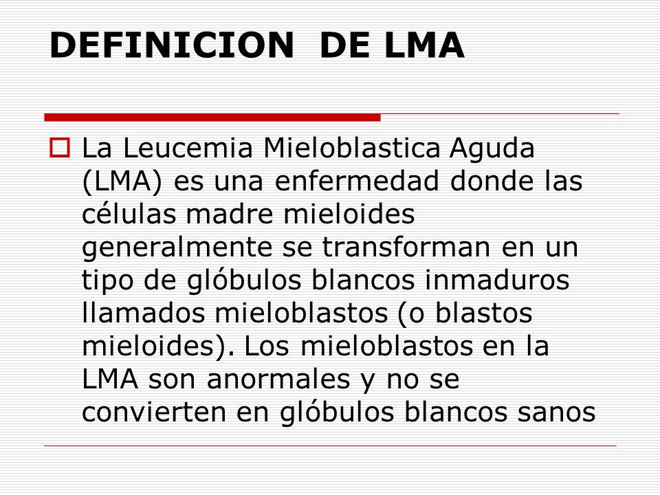 DEFINICION DE LMA