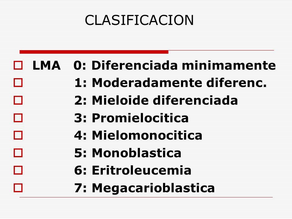 CLASIFICACION LMA 0: Diferenciada minimamente