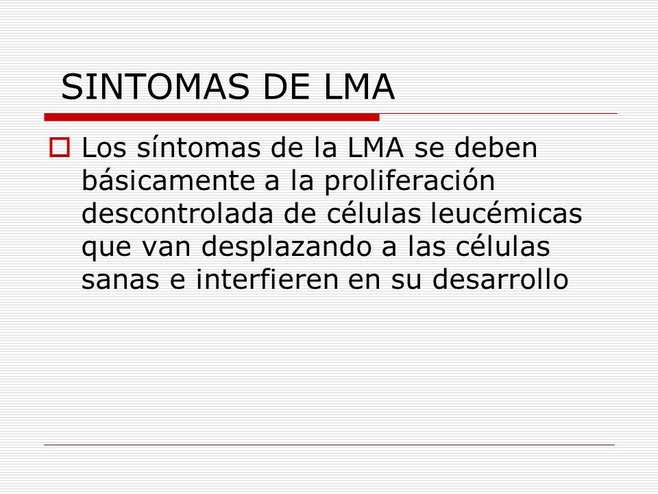 SINTOMAS DE LMA