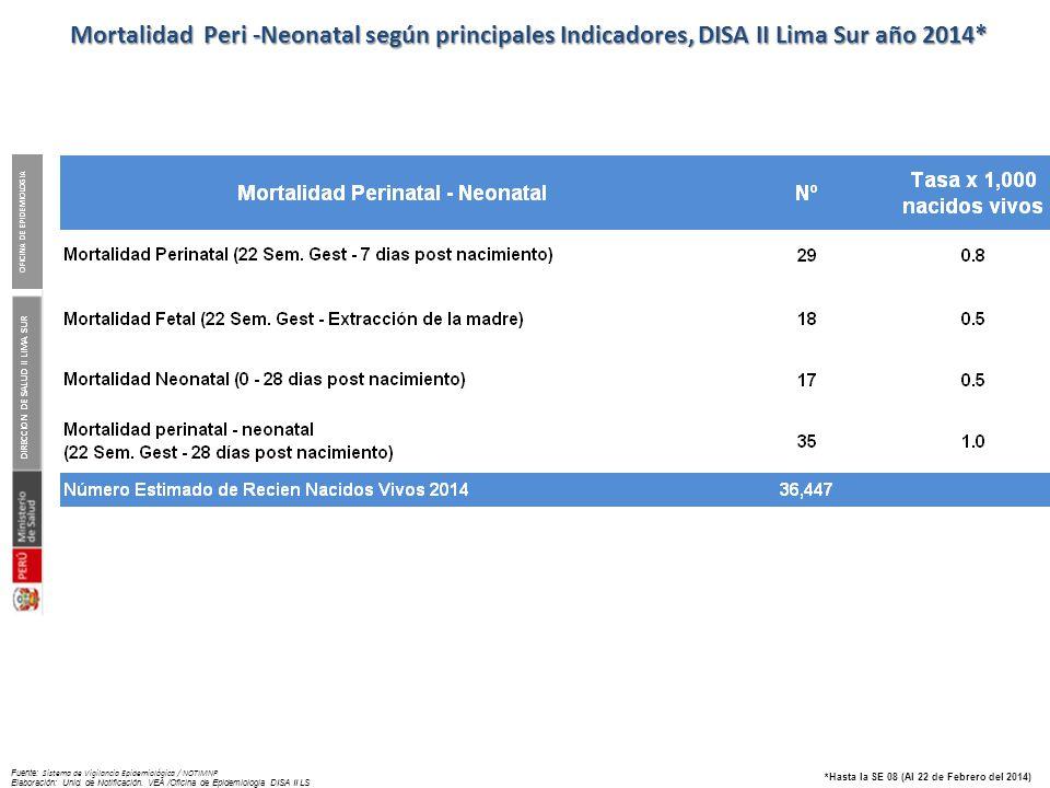 Mortalidad materna según causa. DISA II Lima Sur. Año 2010 – 2013