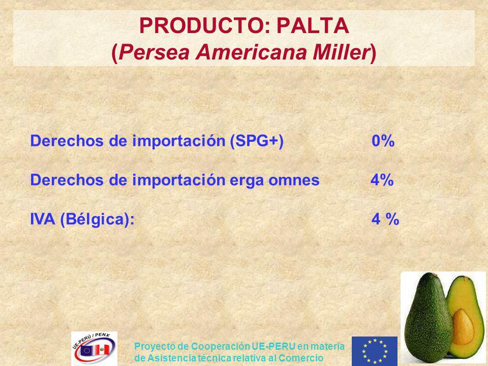 PRODUCTO: PALTA (Persea Americana Miller)