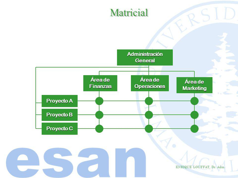 Matricial Administración General Área de Finanzas Área de Operaciones