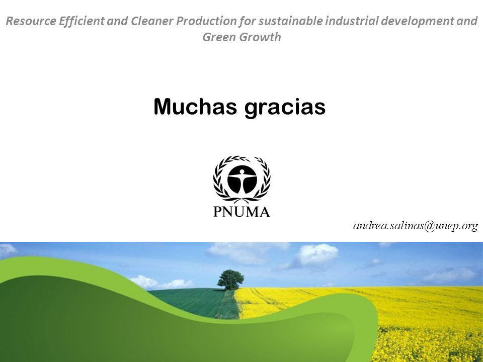 Resource Efficient and Cleaner Production for sustainable industrial development and Green Growth