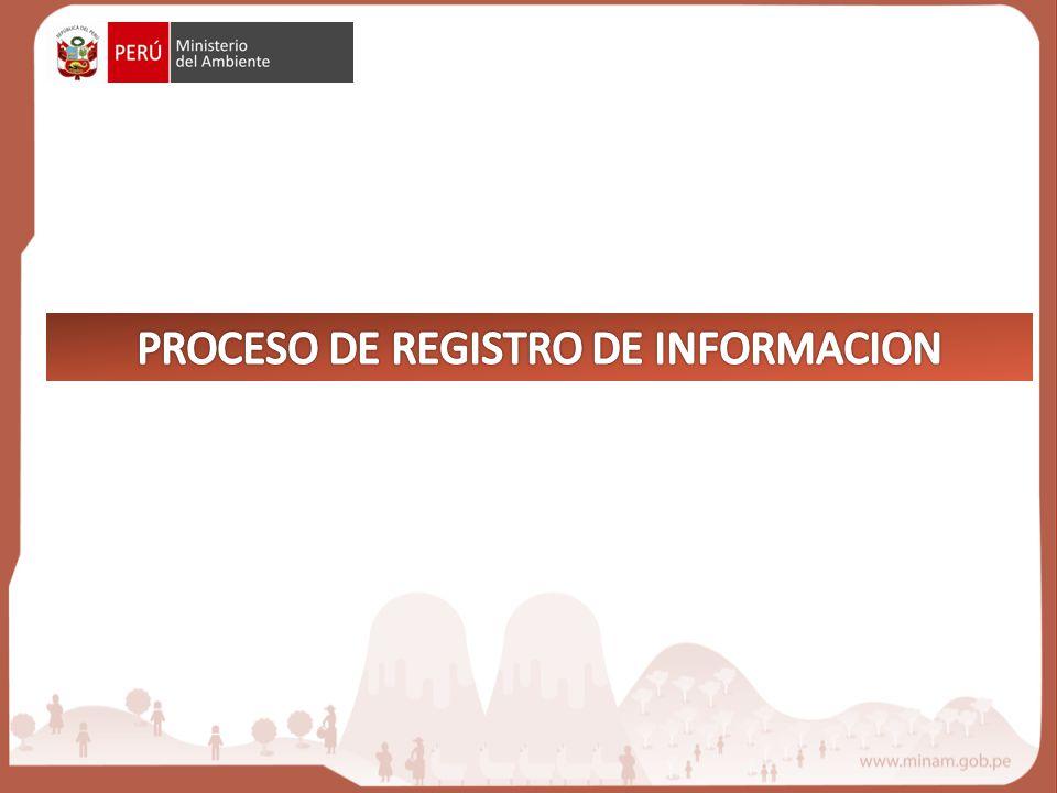 PROCESO DE REGISTRO DE INFORMACION