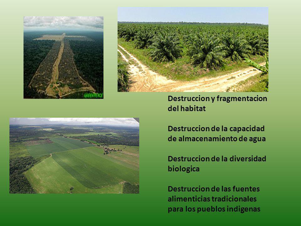 Destruccion y fragmentacion del habitat