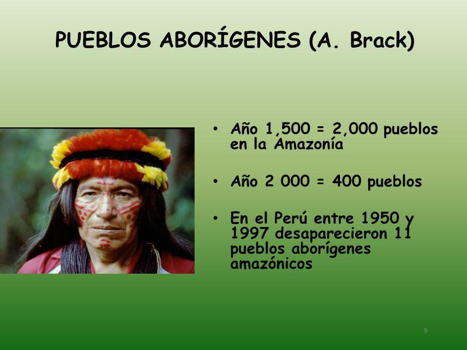 PUEBLOS ABORÍGENES (A. Brack)