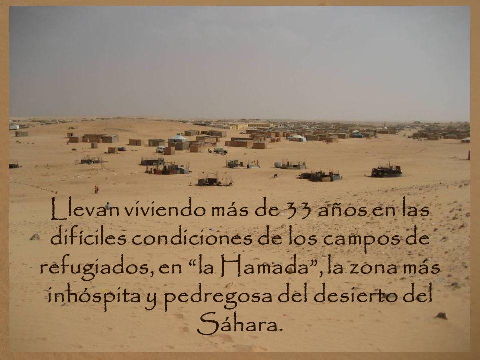 Llevan viviendo más de 33 años en las difíciles condiciones de los campos de refugiados, en la Hamada , la zona más inhóspita y pedregosa del desierto del Sáhara.