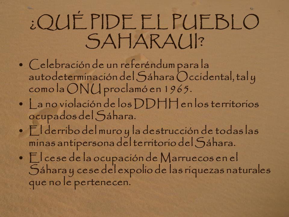 ¿QUÉ PIDE EL PUEBLO SAHARAUI