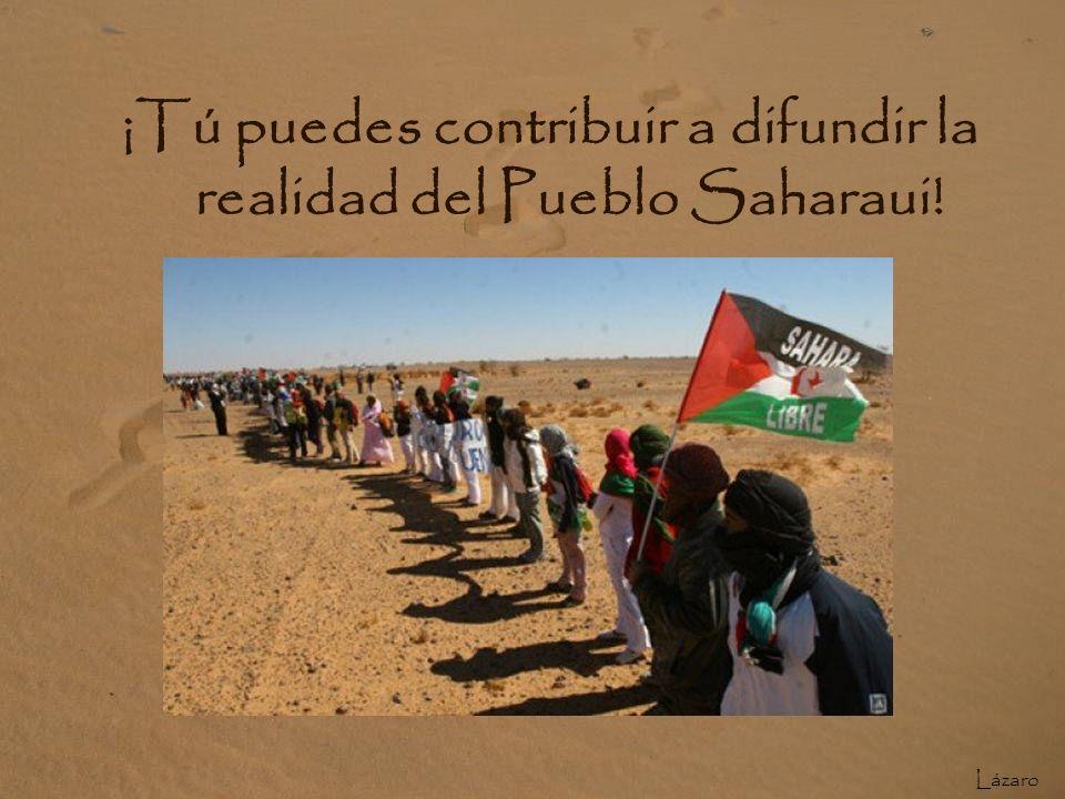 ¡Tú puedes contribuir a difundir la realidad del Pueblo Saharaui!