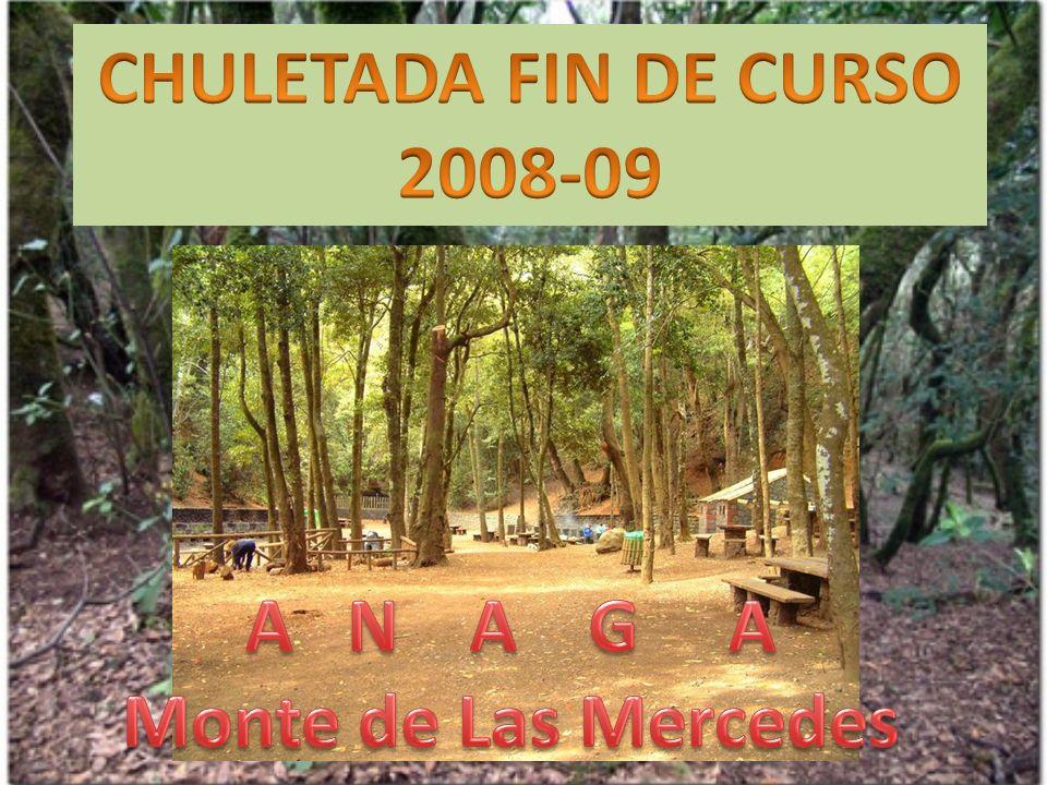 CHULETADA FIN DE CURSO 2008-09 A N A G A Monte de Las Mercedes