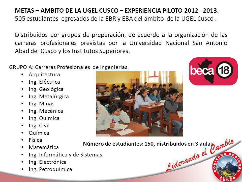 METAS – AMBITO DE LA UGEL CUSCO – EXPERIENCIA PILOTO 2012 - 2013.