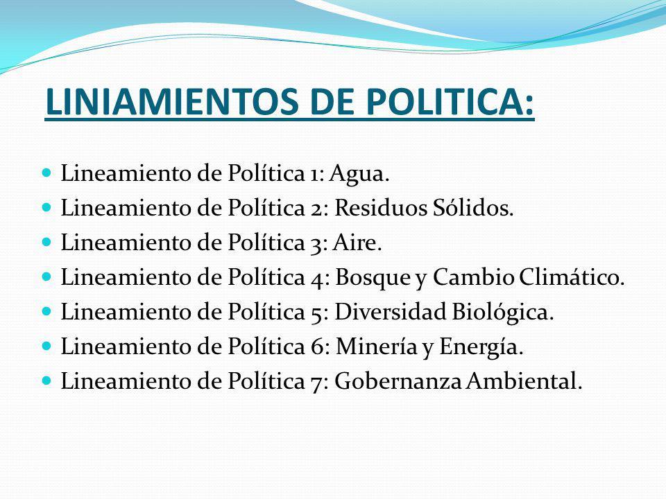 LINIAMIENTOS DE POLITICA: