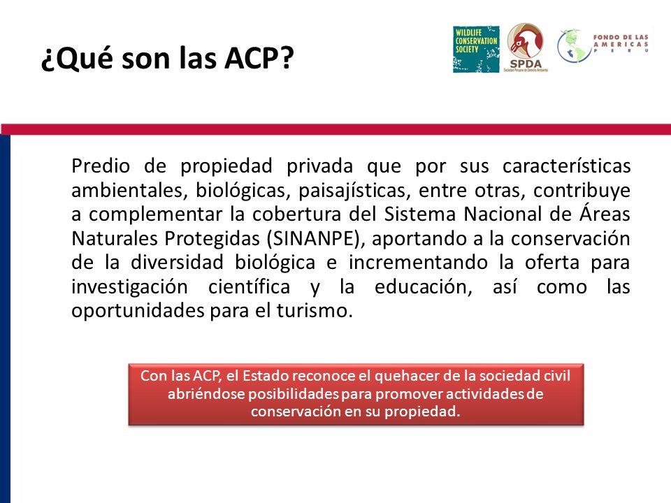 ¿Qué son las ACP