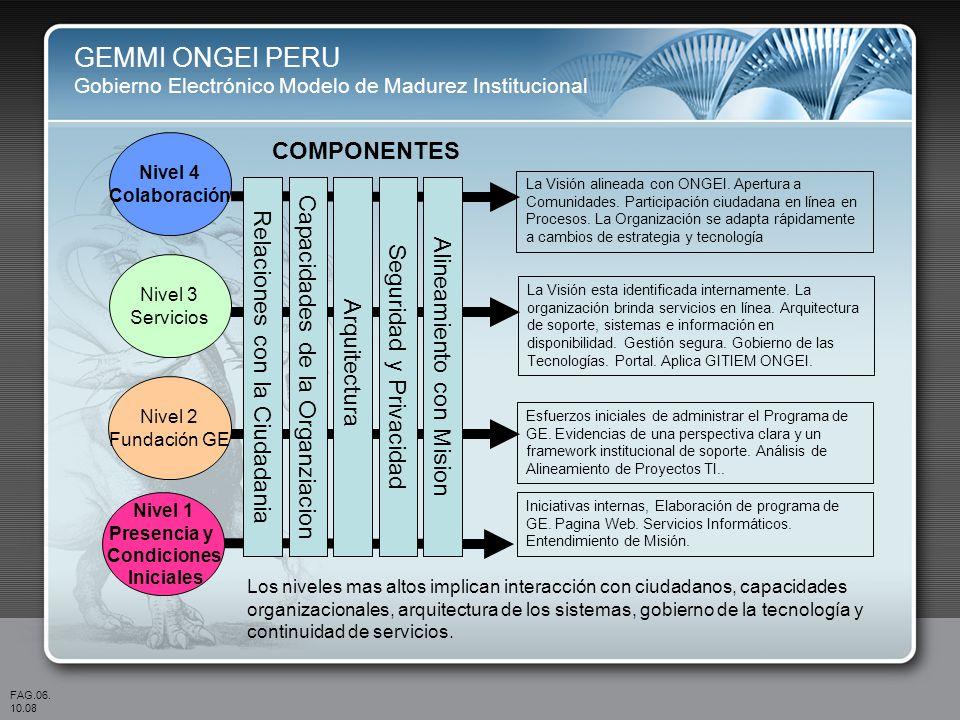 GEMMI ONGEI PERU COMPONENTES Capacidades de la Organziacion