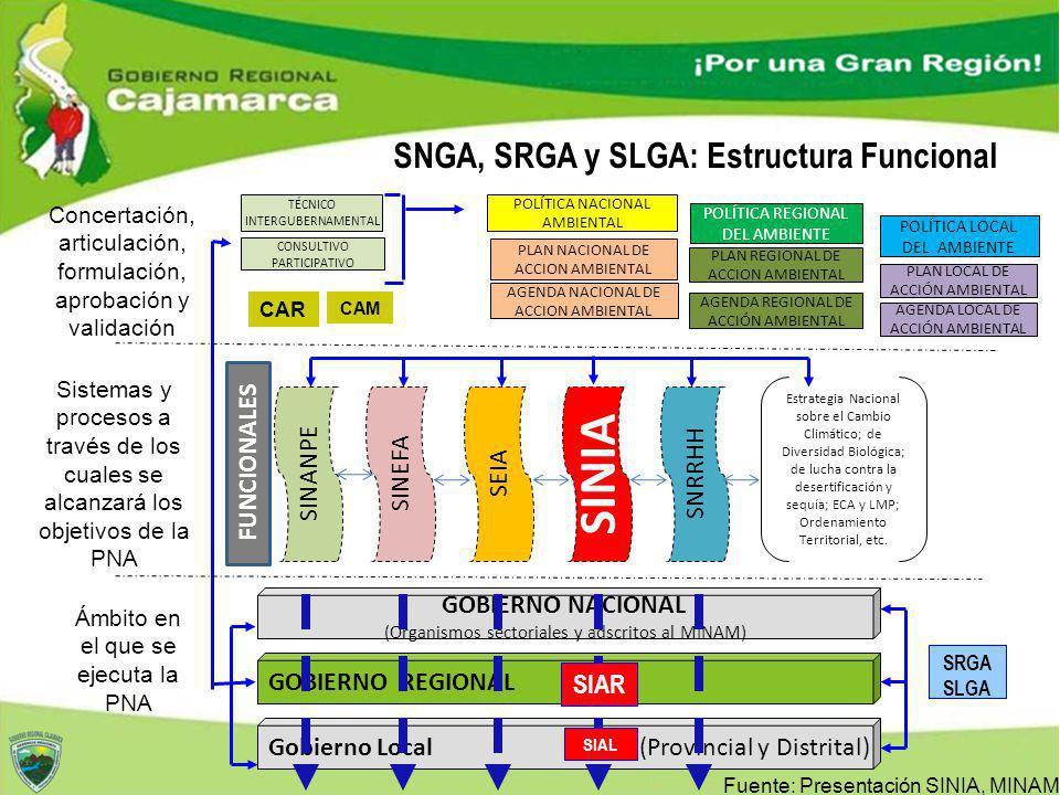 SNGA, SRGA y SLGA: Estructura Funcional