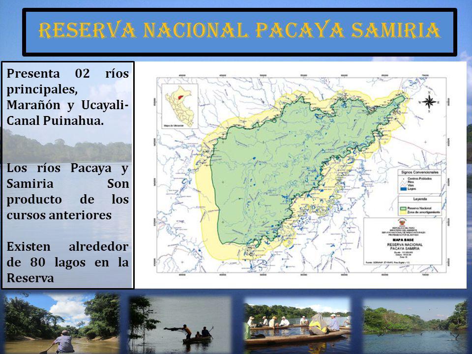 Reserva nacional pacaya samiria