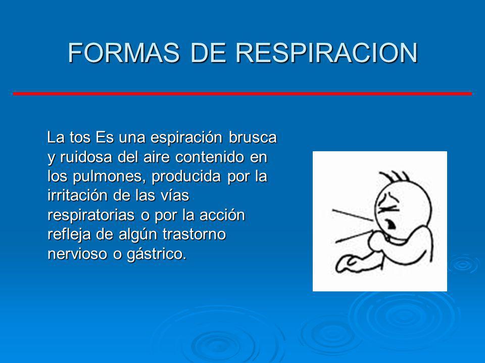 FORMAS DE RESPIRACION