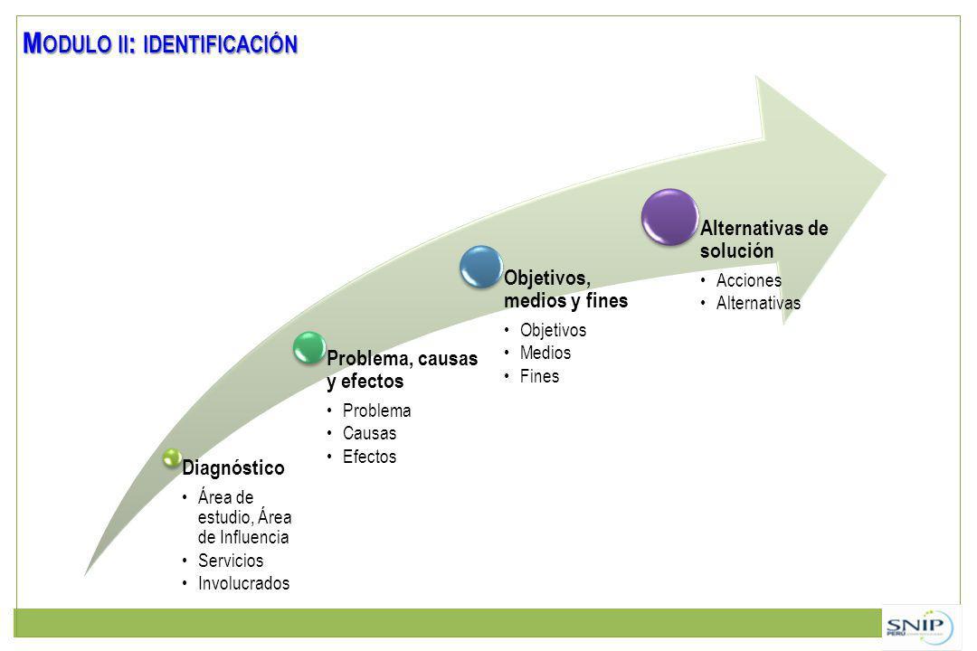 Modulo ii: identificación