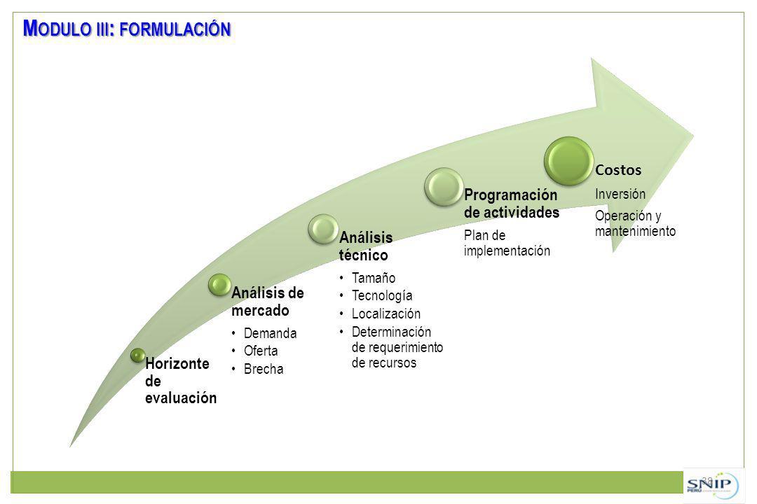 Modulo iii: formulación