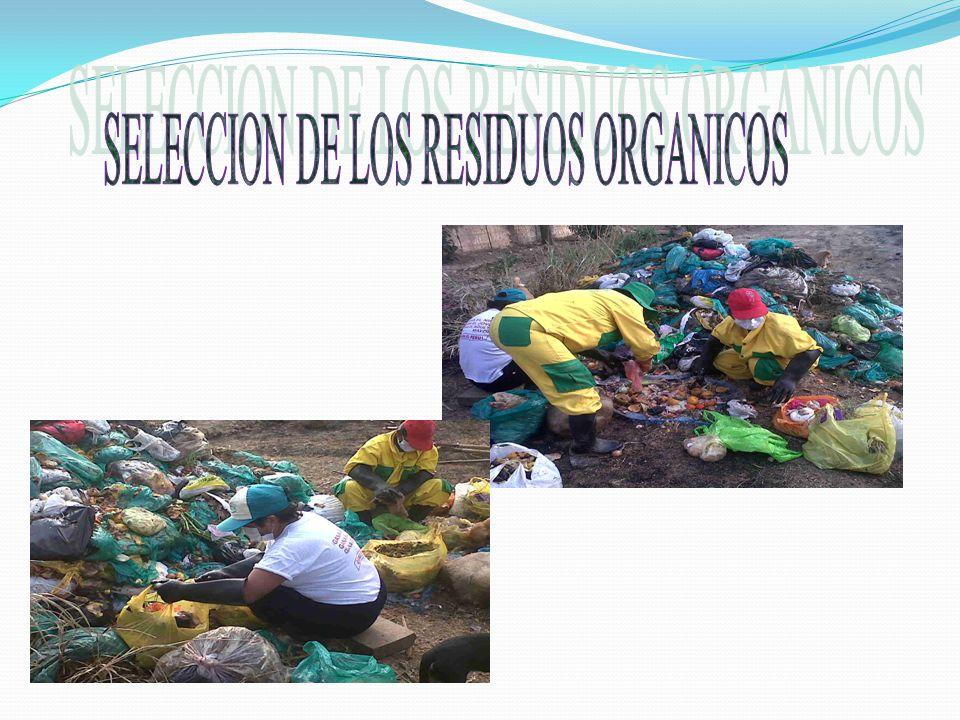 SELECCION DE LOS RESIDUOS ORGANICOS