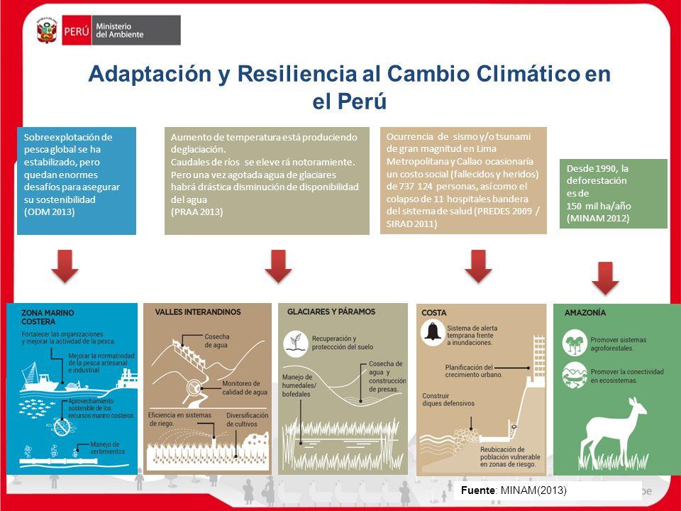 Adaptación y Resiliencia al Cambio Climático en el Perú