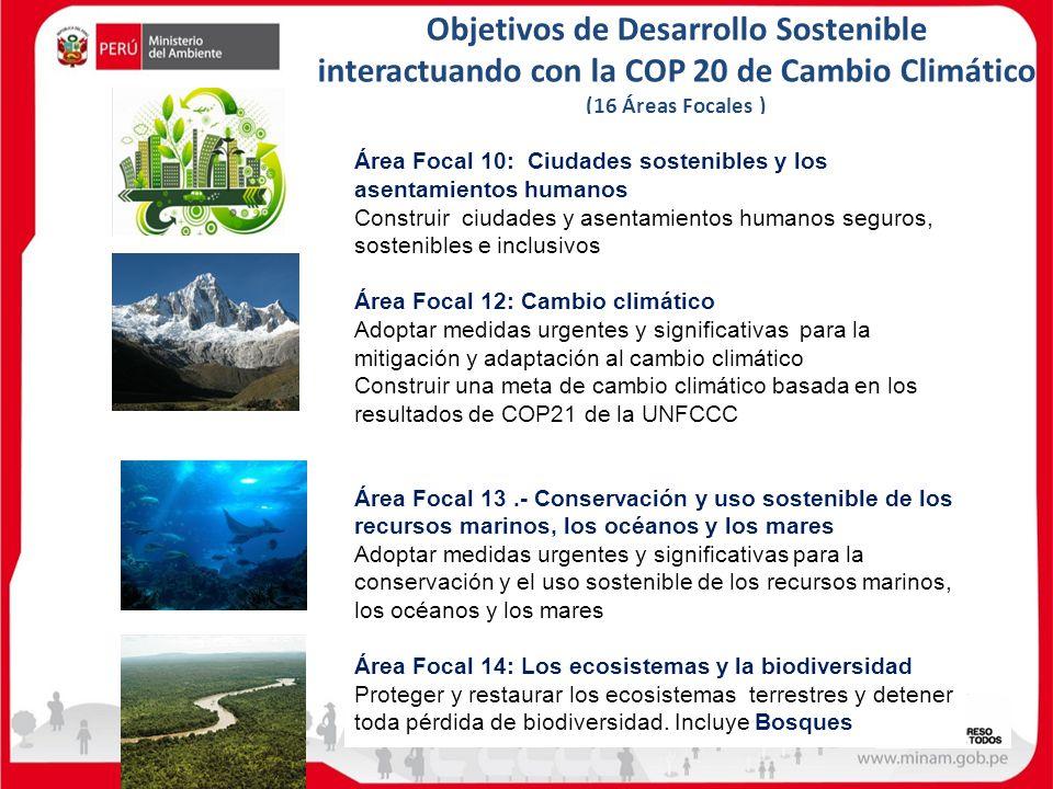 Objetivos de Desarrollo Sostenible interactuando con la COP 20 de Cambio Climático (16 Áreas Focales )