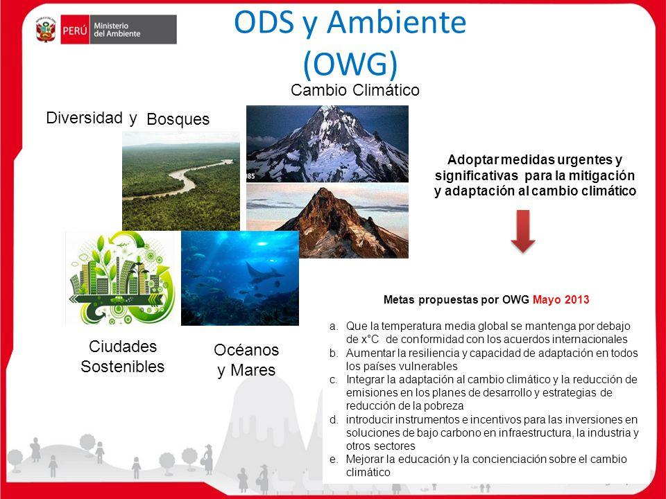 Metas propuestas por OWG Mayo 2013