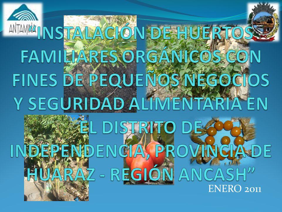 INSTALACIÓN DE HUERTOS FAMILIARES ORGÁNICOS CON FINES DE PEQUEÑOS NEGOCIOS Y SEGURIDAD ALIMENTARIA EN EL DISTRITO DE INDEPENDENCIA, PROVINCIA DE HUARAZ - REGIÓN ANCASH