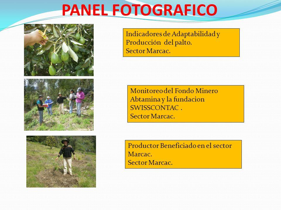 PANEL FOTOGRAFICO Indicadores de Adaptabilidad y Producción del palto.