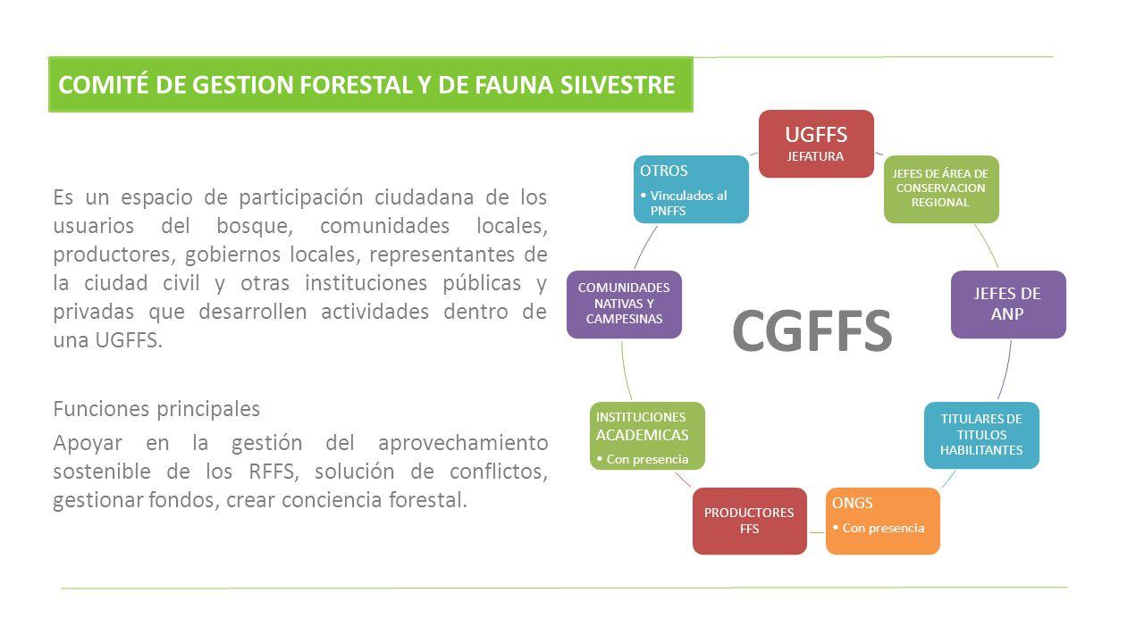 CGFFS COMITÉ DE GESTION FORESTAL Y DE FAUNA SILVESTRE UGFFS JEFATURA