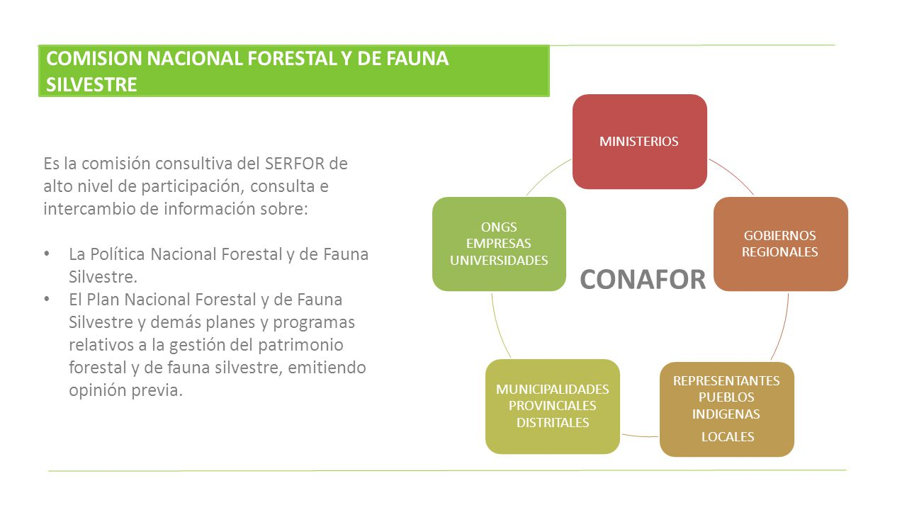 CONAFOR COMISION NACIONAL FORESTAL Y DE FAUNA SILVESTRE