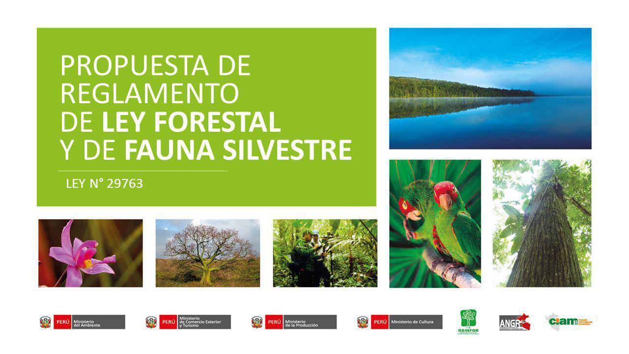 PROPUESTA DE REGLAMENTO DE LEY FORESTAL Y DE FAUNA SILVESTRE