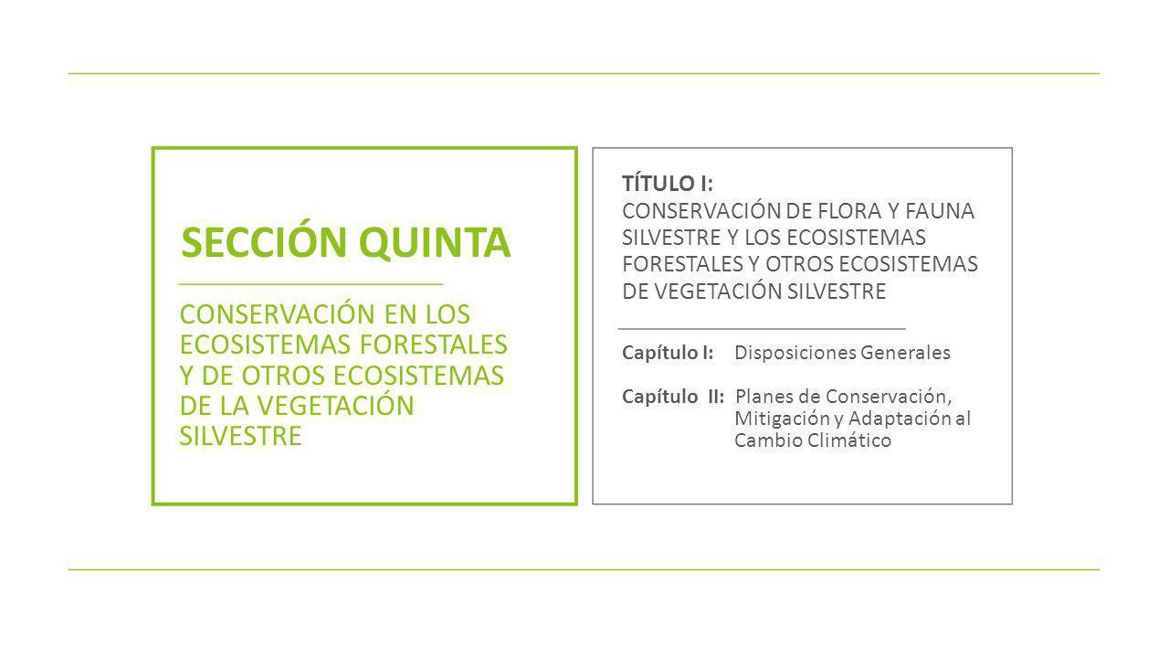 TÍTULO I: CONSERVACIÓN DE FLORA Y FAUNA SILVESTRE Y LOS ECOSISTEMAS FORESTALES Y OTROS ECOSISTEMAS DE VEGETACIÓN SILVESTRE.