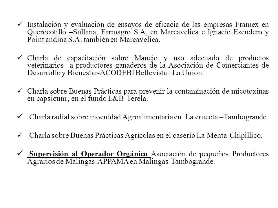 Instalación y evaluación de ensayos de eficacia de las empresas Framex en Querocotillo –Sullana, Farmagro S.A, en Marcavelica e Ignacio Escudero y Point andina S.A. también en Marcavelica.