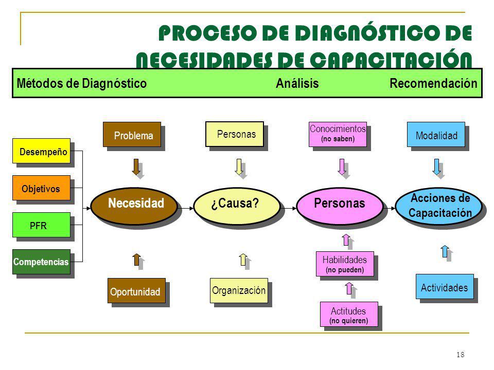PROCESO DE DIAGNÓSTICO DE NECESIDADES DE CAPACITACIÓN