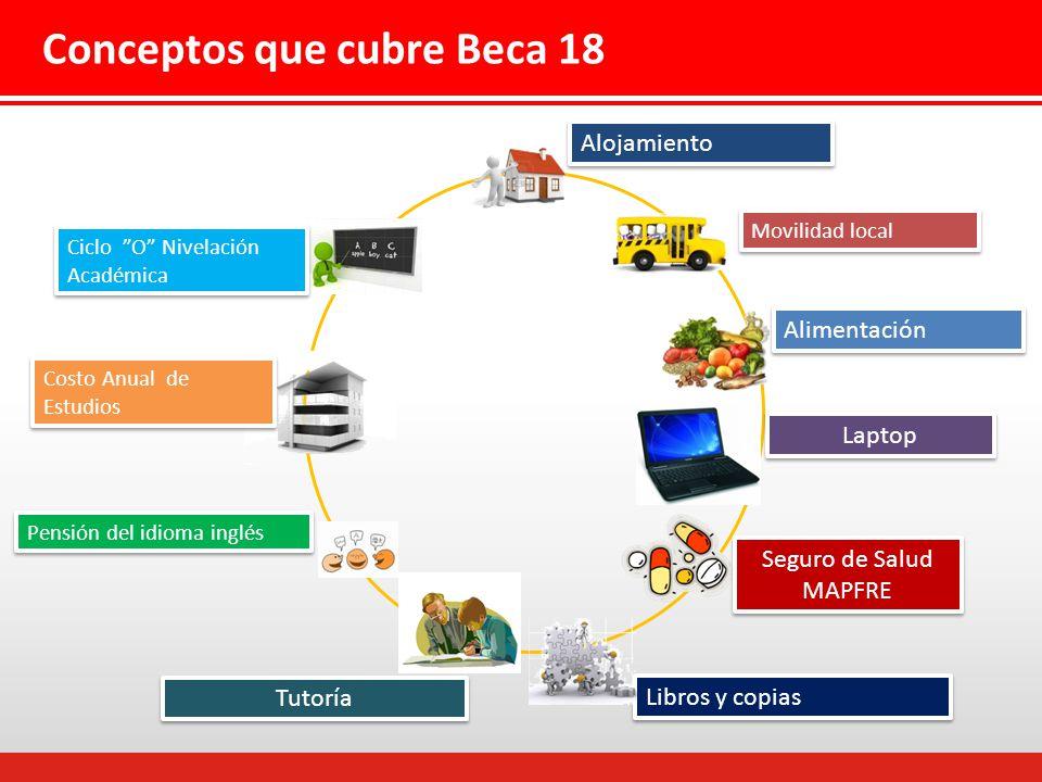 Conceptos que cubre Beca 18